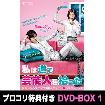 ★「私は道で芸能人を拾った」DVD-BOX1 / ソンフン