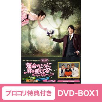 運命のように君を愛してるDVD-BOX1